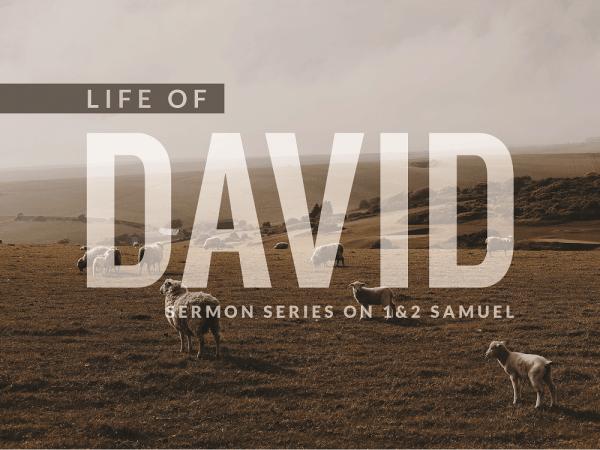 Life-of-David-ftw-600x450